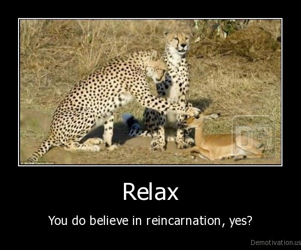 demotivation.us__Relax-You-do-believe-in-reincarnation-yes